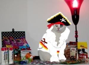 Fixi Mausebär und der Piratenschatz